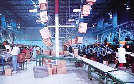 Overhead Conveyor Systems - Fruit Produce Packing Operations