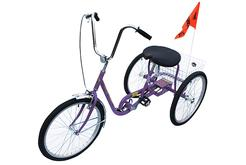 Purple Industrial Bicycle